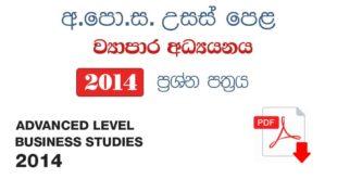 advance level Business Studies