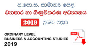 Business & Accounting Studies 2019